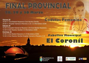 CARTELES FASES FINALES FABSEVILLA 13/14