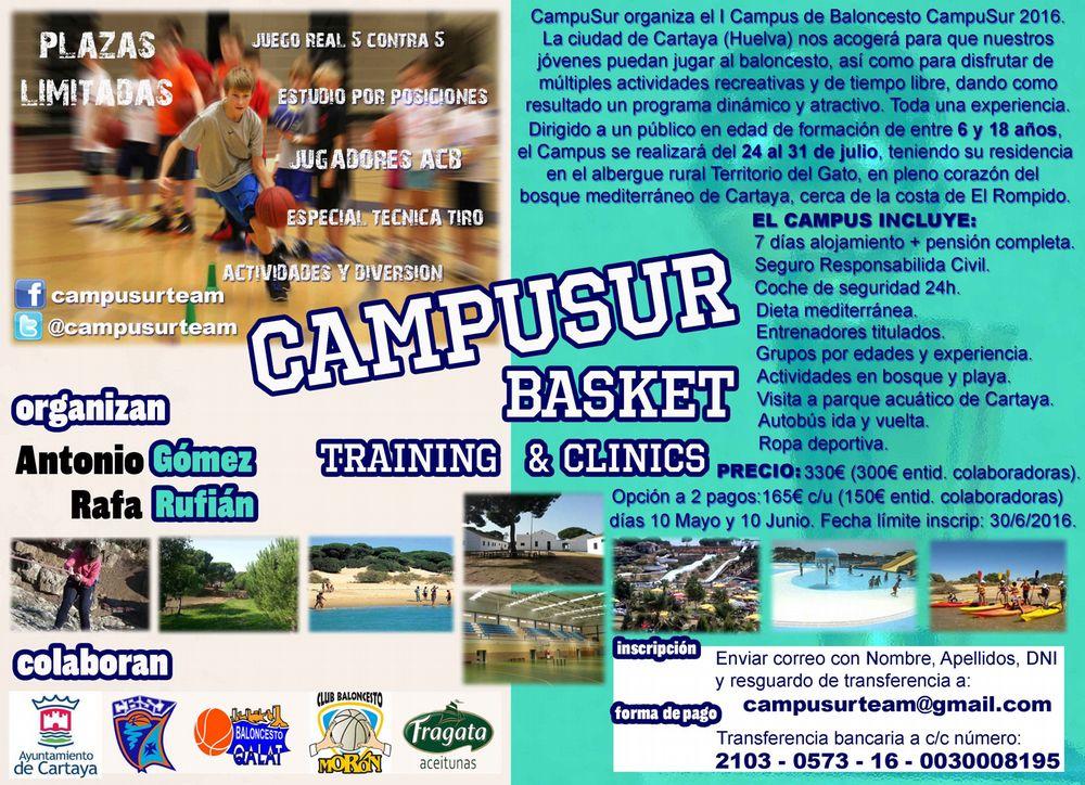 federacion andaluza de baloncesto sevilla:
